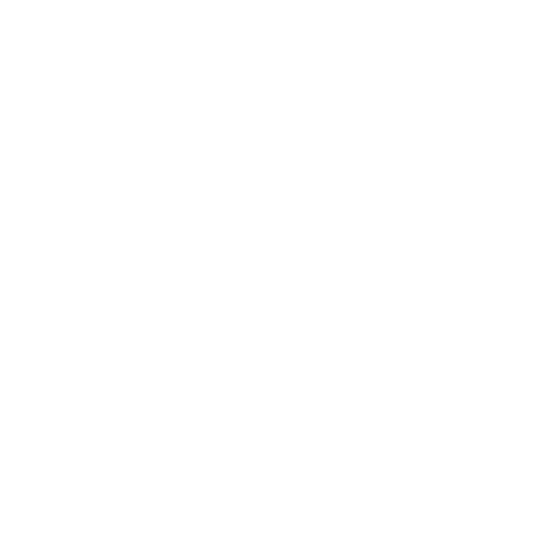 Dollar Sign icon white